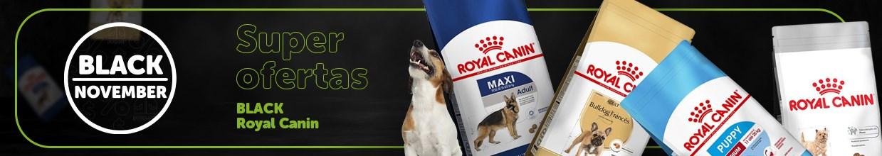 Black friday de rações para cachorro Royal Canin na Black November daPoli-Pet. Os principais produtos pet em promoção
