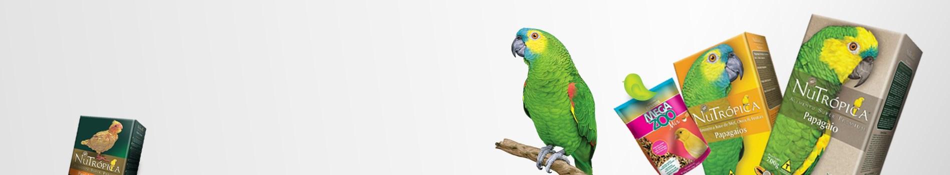 Produtos para pássaros