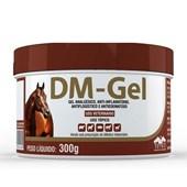 Anti inflamatório DM Gel 300gr