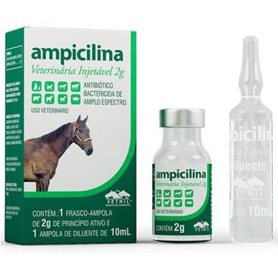 Antibiótico Ampicilina Injetável para Cães e Gatos 2gr
