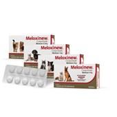 Antiinflamatório Meloxinew para Cães e Gatos Caixa com 10 Comprimidos 1mg