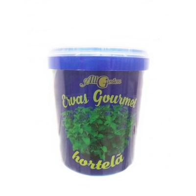 Erva Gourmet All Garden Hortelã