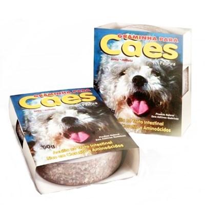 Graminha Pet Pira para Cães
