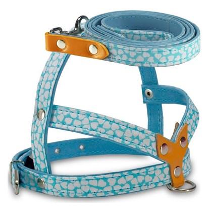 Guia e Peitoral Veneza Azul para Cães AMF N2