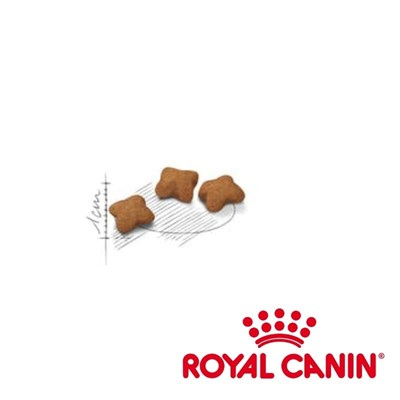 Ração Royal Canin Feline Kitten para Gatos Filhotes 1,5kg