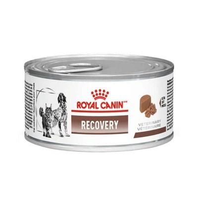 Ração Úmida Lata Royal Canin Veterinary Diet Recovery para gatos e cachorros adultos 195g