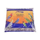 Semente de Girassol Extra Pássaro Forte  5kg